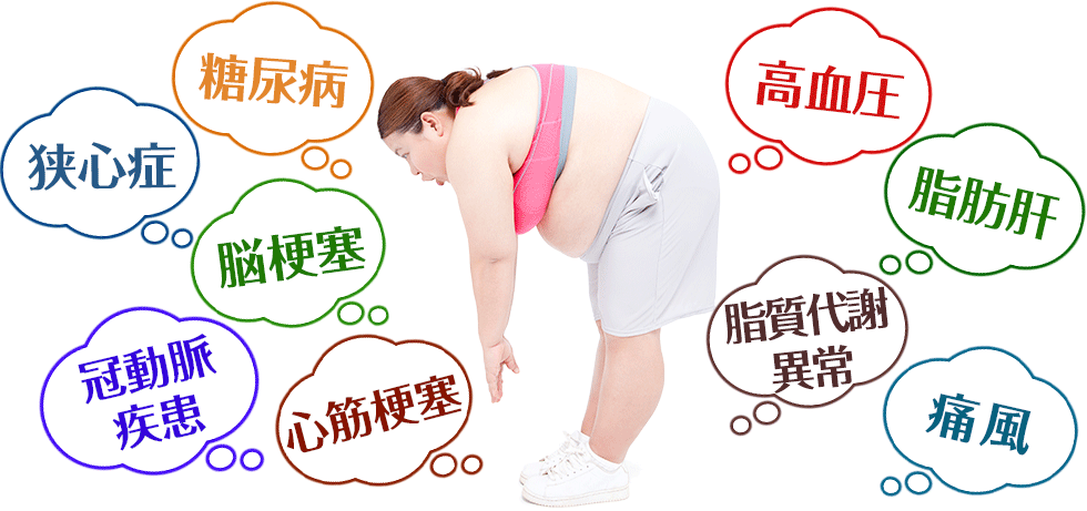 「肥満症」の画像検索結果